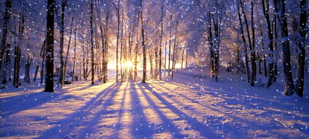 冬の朝日 希望